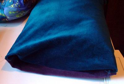 Two Color Buckwheat Hull Pillow